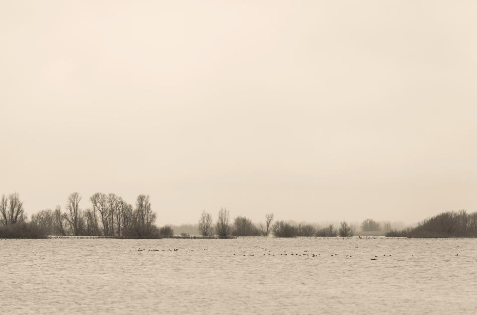 Sutton Gault Flood