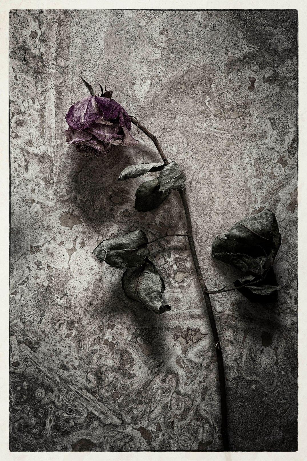 Fleurdumal