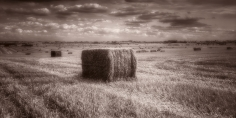 black & white landscape photograph of a haystack @petercorr.com