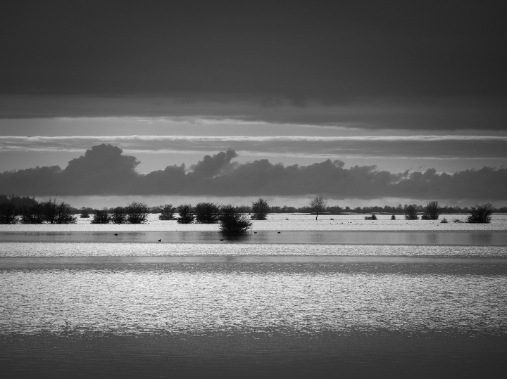 flood water fenlands monochrome photograph